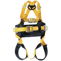 Body Harness & Belts
