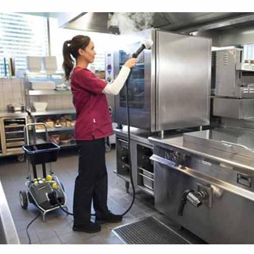 karcher professional steam cleaner sg 4 4 10922820. Black Bedroom Furniture Sets. Home Design Ideas