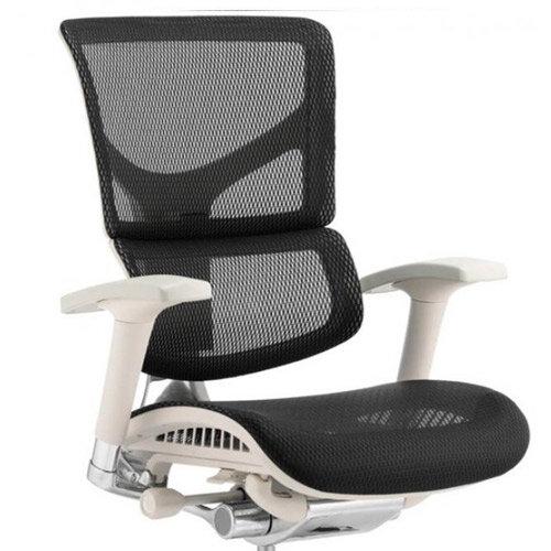 Awe Inspiring Ergo Dynamic Grey Frame Black Mesh Ergonomic Posture Office Chair Soft Designer Mesh Seat And Split Back Best Image Libraries Sapebelowcountryjoecom