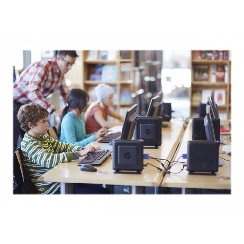 HP Flexible t620 - Thin client - Tower Desktop PC - 1 x GX-217GA 1 65 GHz -  RAM 4 GB - SSD 8 GB - Radeon HD 8280E - GigE - HP Smart Zero Technology