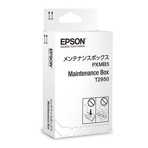 Epson T2950 Maintenance Box for WorkForce WF-100W Inkjet Printer C13T295000