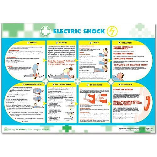 Wallace Cameron Electric Shock Poster Laminated Wall-mountable W590xH420mm