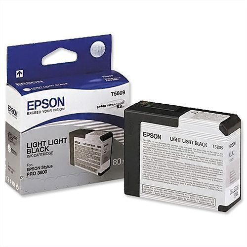 Epson T5809 Light Light Black Ink Cartridge C13T580900