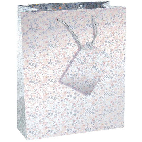 Holographic Gift Bags Size 5 Bottle Assorted Pack of 12