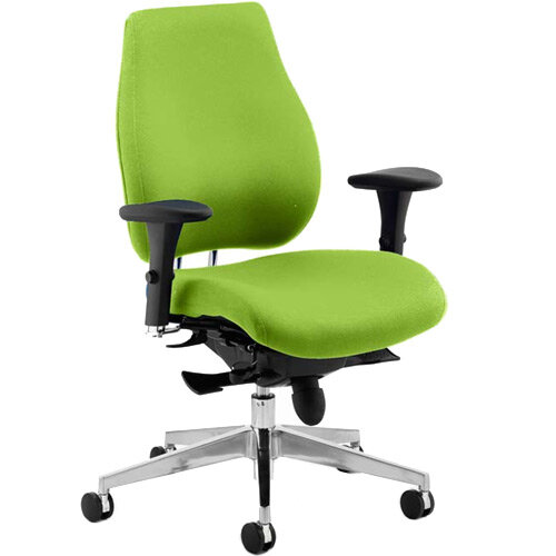Chiro Plus High Back Ergonomic Posture Office Chair Swizzle Green