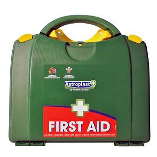 Green Box HSE 11-20 Person First Aid Kit – Compliant With Health &Safety Regulation, Wall-Mountable, Durable, Compartmentalised &Hinged Case (1001019)