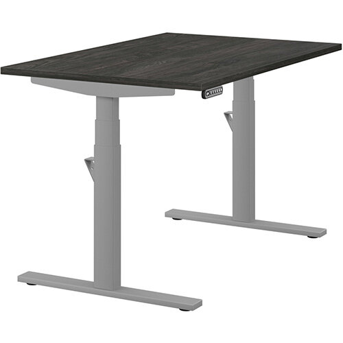 LEAP Electric Height Adjustable Rectangular Sit Stand Desk Plain Top W1200xD800xH620-1270mm Carbon Walnut Top Silver Frame. Prevents &Reduces Muscle &Back Problems, Heart Risks &Increases Brain Activity.