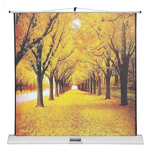Franken Portable Projection Screen ValueLine W:1600xH:1600mm Format 1:1 LWM21616