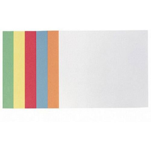 Franken Training Cards Rectangular 200x149mm Assorted Colours Pack of 300 MKS2299