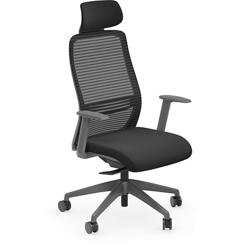 NV Posture Office Chair with Contoured Mesh Back and Adjustable Lumbar Support &Headrest Black With Grey Frame