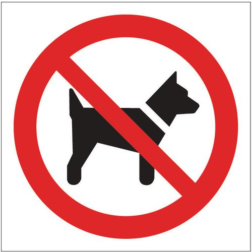 Sign No Dogs Pictorial 400x400 Rigid Plastic