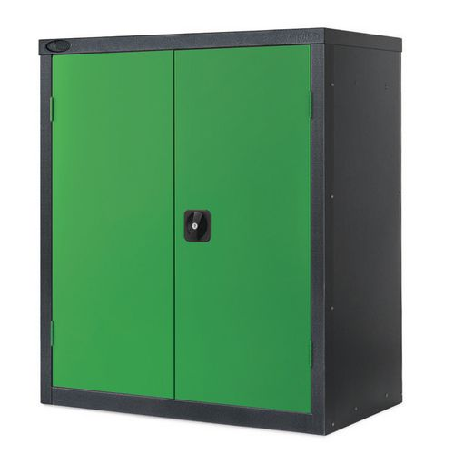 Black Carcass Cupboard Low Colour Green