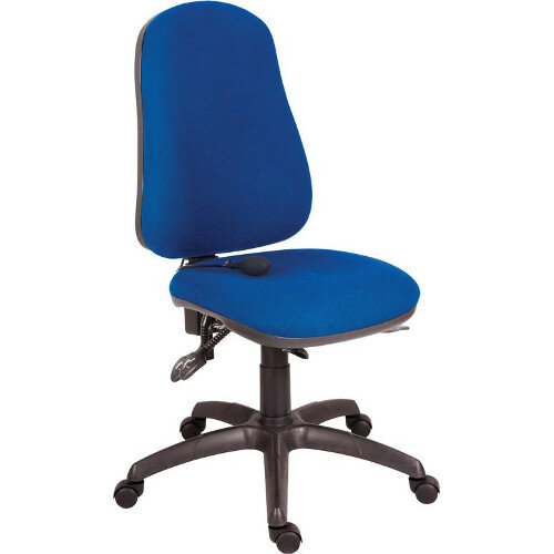 Ergo Comfort Fabric Ergonomic Posture Office Chair With Pump Up Lumbar Support In Blue