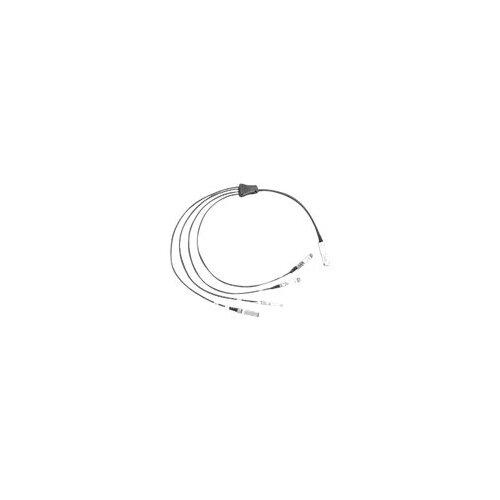 Cisco Direct-Attach Breakout Cable - Network cable - QSFP+ (M) to SFP+ (M) - 2 m - SFF-8431/SFF-8436/SFF-8461 - passive - brown - for Nexus 3064-E, 3064PQ