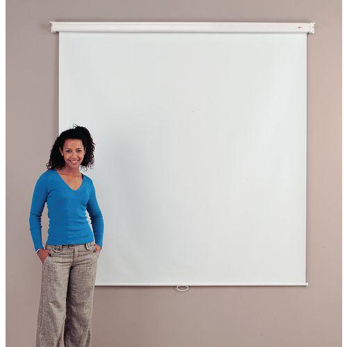 Budget Wall Projector Screen 2400X2400mm