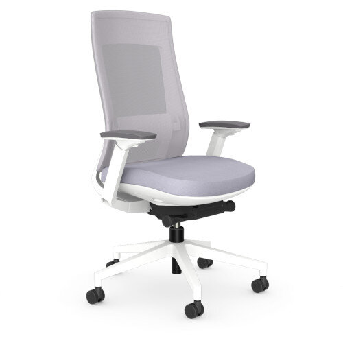 X.22 Posture Office Chair with Unique Grey Mesh Back And Adjustable Lumbar Support White Frame