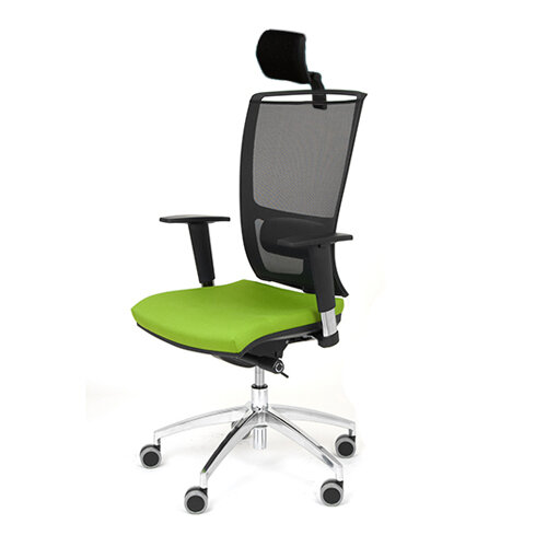 Ergonomic Mesh Task Chair With Headrest Lumbar Support Adjustable Arms