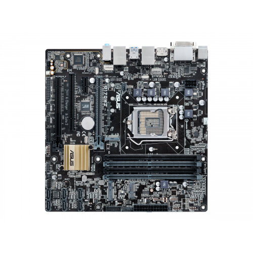 ASUS Q170M2 INTEL LAN DRIVER FOR MAC DOWNLOAD