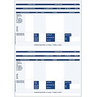 Iris Compatible  A4  Payslip 2 per Sheet  1 x Pack of 1000 Payslips
