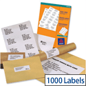Avery White Copier Labels 10 per Sheet 105x57mm White 1000 Labels Ref 3425