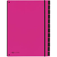 Pagna A4 12 Compartment Master Organiser Pink Pack of 8