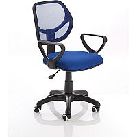 Meshlet Blue Mesh Executive Office Chair With Arms