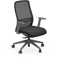 NV Posture Office Chair with Contoured Mesh Back and Adjustable Lumbar Support Black With Grey Frame