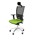 Ergonomic Mesh Task Chair With Headrest Lumbar Support & Adjustable Arms Black/Green OZ Series