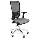 Ergonomic Mesh Task Chair With Lumbar Support & Adjustable Arms Black/Grey OZ Series