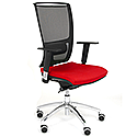 Ergonomic Mesh Task Chair With Lumbar Support & Adjustable Arms Black/Red OZ Series