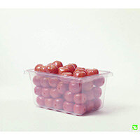 Rubbermaid 19L ProSave Food Box Clear