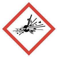 Sign Explosive Vinyl Strip Of 20  HxW: 16x16