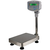 Floor Scale 300Kgx100G Ec Type Approved