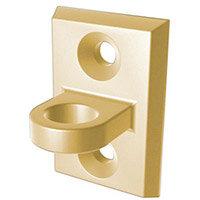 Wall Plate  Polished Brass