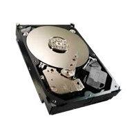 """Seagate Video 3.5 HDD ST500VM000 - Hard drive - 500 GB - internal - 3.5"""" - SATA 6Gb/s - 5900 rpm - buffer: 64 MB"""