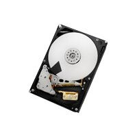 "HGST Ultrastar 7K6000 HUS726050AL5210 - Hard drive - 5 TB - internal - 3.5"" - SAS 12Gb/s - 7200 rpm - buffer: 128 MB"