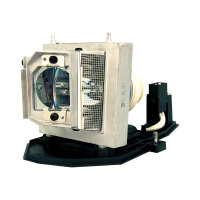 InFocus - Projector lamp - 3000 hour(s) (standard mode) / 2250 hour(s) (economic mode)
