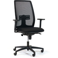 Lira Mesh Office Chair with Adjustable Lumbar Support & Adjustable Arms Black
