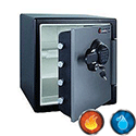 Sentry Big Bolts Fire Safe with Dual Lock