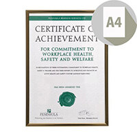 Black & Gold Pinstripe A4 Certificate Frame