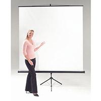 Budget Tripod Portable Projector Screen HxW 2400x2400mm