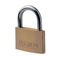 Economy Brass Padlock 21mm Shackle Pack of 2