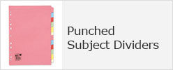 Punched Subject Dividers
